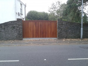 Peter Lynn gate